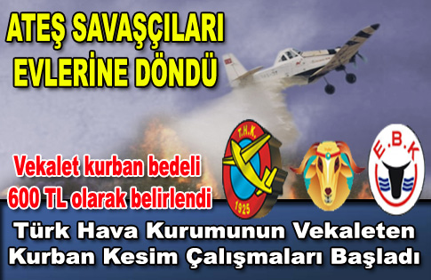 Türk Hava Kurumunun Vekaleten