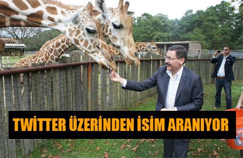DEV TEMA PARK'A İSİM ARANIYOR