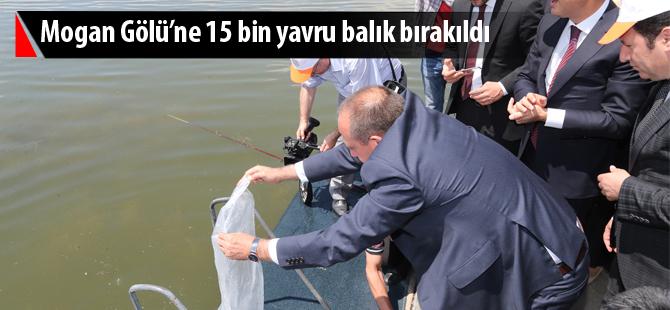 MOGAN GÖLÜ'NE 15 BİN YAVRU BALIK BIRAKILDI