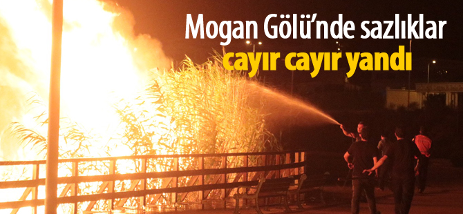 Mogan Gölü Sazlık alanı yine yandı
