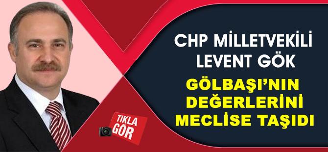 CHP Milletvekili Gök Gölbaşı'nı TBMM'ye taşıdı