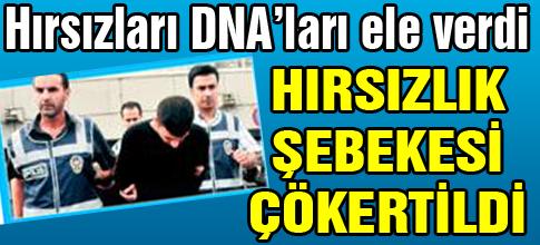 HIRSIZLARI DNAları ELE VERDİ