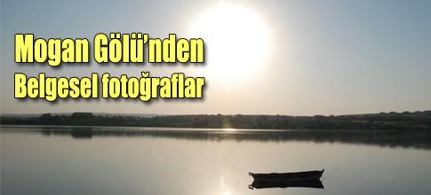 Mogan Belgesel Fotoğraflarında