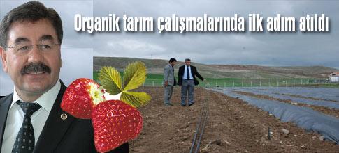 Organik tarım için ilk adım atıldı