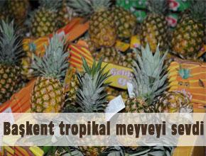Başkent tropikal meyveyi sevdi