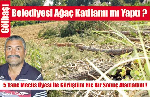 Gölbaşı Belediyesi Ağaç Katliamı mı yaptı?