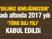 2017 'Türk Dili Yılı' kabul edildi